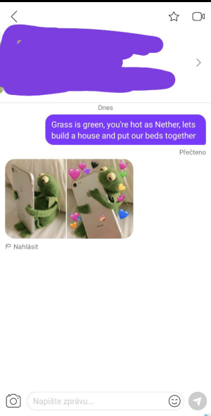 Her bio said she likes minecraft: Dnes  Grass is green, you're hot as Nether, lets  build a house and put our beds together  Přečteno  hore  P Nahlásit  O'  Napište zprávu. Her bio said she likes minecraft