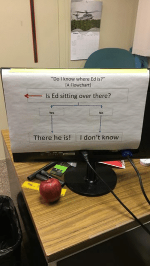 "Asking, Got, and Yes: ""Do I know where Ed is?""  [A Flowchart)  Is Ed sitting over there?  Yes  No  I don't know  There he is! A co-worker got tired of people asking where Ed is"