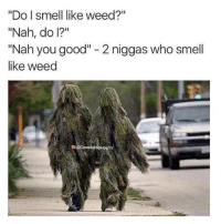 "Memes, Smell, and Weed: ""Do l smell like weed?""  ""Nah, do I?""  ""Nah you good"" - 2 niggas who smell  like weed  D@CanadaHipHop Deadass.. 😂💀 WSHH"