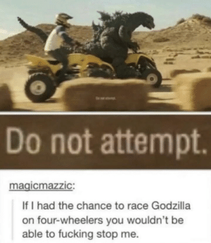 Fucking, Godzilla, and Memes: Do not attempt  magicmazzIC:  If I had the chance to race Godzilla  on four-wheelers you wouldn't be  able to fucking stop me. Do Not Attempt via /r/memes https://ift.tt/2O0E052