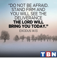 "Memes, Exodus, and Deliverance: ""DO NOT BE AFRAID  STAND FIRM AND  YOU WILL SEE THE  DELIVERANCE  THE LORD WILL  BRING YOU TODAY.""  EXODUS 14:13  TBN God is on your side!"