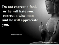 Do Not Correct A Fool: Do not correct a fool  or he will hate you;  correct a wise man  and he will appreciate  you.  e-buddhism com  fb/Buddhist Teaching