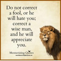 Do Not Correct A Fool: Do not correct  a fool, or he  will hate you  Correct a  Wise man,  and he will  appreciate  you  Mesmerizing Quotes  www.MesmerizingQuotes4u.com