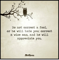 Higher Perspective via Intelligence is sexy: Do not correct a fool,  or he will hate you, correct  a wise man, and he will  appreciate you. Higher Perspective via Intelligence is sexy