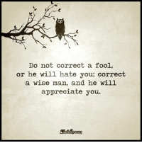 Do Not Correct A Fool: Do not correct a fool,  or he will hate you, correct  a wise man, and he will  appreciate you.