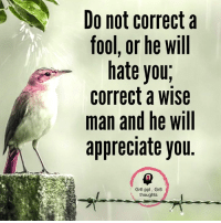 Do Not Correct A Fool: Do not correct a  fool, or he will  hate you  correct a wise  man and he will  appreciate you  Gr8 ppl Gr8  thoughts