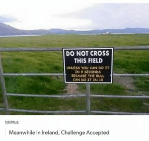 Tumblr, Blog, and Cross: DO NOT CROSS  THIS FIELD  UNLESS YOU CAN DO IT  IN 9 SECONDS  BECAUSE THE BULL  CAN DO T IN 10  lolshtus:  Meanwhile In Ireland, Challenge Accepted rage-comics-base:  Can You do it