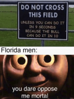 Florida man on a field: DO NOT CROSS  THIS FIELD  UNLESS YOU CAN DO IT  IN 9 SECONDS  BECAUSE THE BULL  CAN DO XT IN 10  Florida men:  you dare oppose  me mortal Florida man on a field
