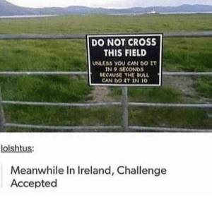 Reddit, Cross, and Ireland: DO NOT CROSS  THIS FIELD  UNLESS YOU CAN DO IT  IN 9 SECONDS  BECAUSE THE BULL  CAN DO AT IN 10  lolshtus:  Meanwhile In Ireland, Challenge  Accepted He comes speed racer