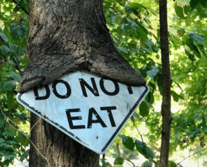 Eat, Hmmm, and Not: DO NOT  EAT hmmm