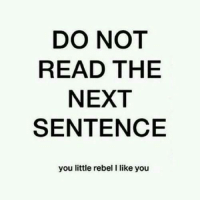 Memes, 🤖, and I Like You: DO NOT  READ THE  NEXT  SENTENCE  you little rebel I like you