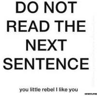 Dank, 🤖, and Reading: DO NOT  READ THE  NEXT  SENTENCE  you little rebel l like you  memes.com