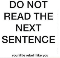 Dank, 🤖, and Next: DO NOT  READ THE  NEXT  SENTENCE  you little rebel l like you