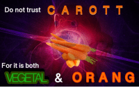 For, Trust, and Shrubbery: Do not trust C A R OT T  For it is both  VEGETAL& ORANG <p>Submission by @tactical-shrubbery</p>