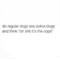 """I'm gonna ask my dog in a lucid dream: do regular dogs see police dogs  and think """"oh shit it's the cops' I'm gonna ask my dog in a lucid dream"""