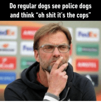 "9gag, Dogs, and Memes: Do regular dogs see police dogs  and think ""oh shit it's the cops"" Oh no, it's the pawlice. Act cool⠀ By ItsHimOla 