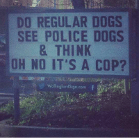 Memes, 🤖, and Ebaums World: DO REGULAR DOGS  SEE POLICE DOGS  & THINK  OH NO IT'S A COP?  wallingford Sign com Photo:  Ebaum's World