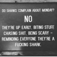 DO SHARKS COMPLAIN ABOUT MONDAY?  NO  THEY RE UP EARLY. BITING STUFF  CHASING SHIT, BEING SCARY  REMINDING EVERYONE THEY RE A  FUCKING SHARK. ~Hot Mess~