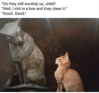 "Funny, Shit, and Good: ""Do they still worship us, child?  ""Well, I shit in a box and they clean it.""  ""Good. Good."" Keep it that way"