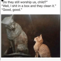 "Funny, Shit, and Good: ""Do they still worship us, child?""  ""Well, I shit in a box and they clean it.""  Good, good.""  35 😂😂😂😂😂😂"
