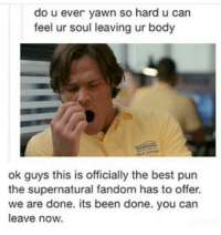 Best Pun: do u ever yawn so hard u can  feel ur soul leaving ur body  ok guys this is officially the best pun  the supernatural fandom has to offer.  we are done. its been done. you can  leave now.