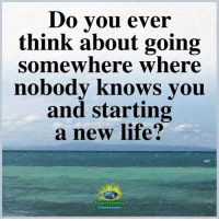 Life, Memes, and Compassion: Do vou ever  think about going  somewhere where  nobodv knows vou  and starting  a new life?  Understanding  Compassion Understanding Compassion Group ❤️
