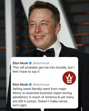Do y'all agree with @ElonMusk? 👇🤔 https://t.co/rb9yaZTjFL: Do y'all agree with @ElonMusk? 👇🤔 https://t.co/rb9yaZTjFL