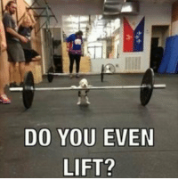 lift: DO YOU EVEN  LIFT?