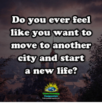 Memes, Compassion, and Understanding: Do you ever feel  like you wantto  move to another  city and start  anew lfe?  Understanding  Compassion Understanding Compassion Group ❤️