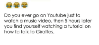 Hourse: Do you ever go on Youtube just to  watch a music video, then 5 hours later  you find yourself watching a tutorial on  how to talk to Giraffes.