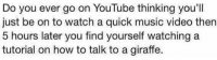 i thought i was the only one: Do you ever go on YouTube thinking you'll  just be on to watch a quick music video then  5 hours later you find yourself watching a  tutorial on how to talk to a giraffe. i thought i was the only one