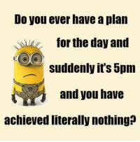 Funny, Meme, and Memes: Do you ever have a plan TOr the day