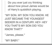 """Memes, Proud, and Quidditch: Do you ever just cry thinking  about how proud James would be  of Harry's quidditch playing  """"MY SON. MY SON YOU KNOW. HE  JUST BECAME THE YOUNGEST  SEEKER IN A CENTURY. HEY- HEY  YOU THAT'S MY SON DID YOU  KNOW THAT?""""  James, please.""""  MY BABY. ~Dobby"""