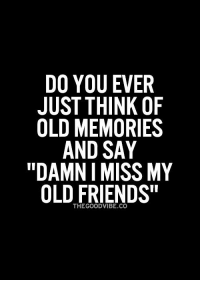 """Memes, All the Time, and 🤖: DO YOU EVER  JUST THINK OF  OLD MEMORIES  AND SAY  """"DAMN I MISS MY  OLD FRIENDS"""" All the time - beautifulmess"""