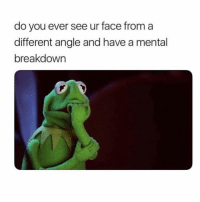 Girl Memes, Face, and Breakdown: do you ever see ur face from a  different angle and have a mental  breakdown