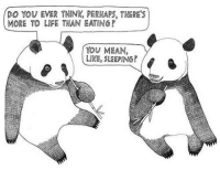 <p>The Life Of A Panda.</p>: DO YOU EVER THINK, PERMAPS, THERE'S  MORE TO LIFE THAN EATINGP  YOU MEAN,  LIKE, SLEEPING? <p>The Life Of A Panda.</p>