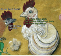 Dude, Fucking, and Chicken: Do you feel it Curtis?  Don't be such  a chicken  I m turning into a Sna  I'm freaking the fuck out dude,  this was a big mistake
