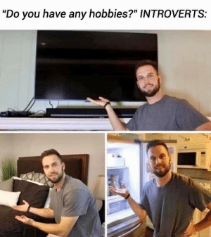 "memehumor:  I too enjoy the finer things in life: ""Do you have any hobbies?"" INTROVERTS: memehumor:  I too enjoy the finer things in life"