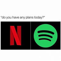 "Netflix & Spotify n Chill 😂💯 WSHH: ""do you have any plans today? Netflix & Spotify n Chill 😂💯 WSHH"