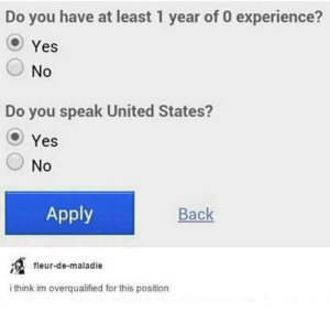 me irl: Do you have at least 1 year of 0 experience?  Yes  No  Do you speak United States?  Yes  No  Apply  Вack  fleur-de-maladie  i think im overqualified for this position me irl