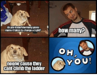 Climbing, Memes, and 🤖: do you know howmany vasou  mains ittakesto changealightp  noone cause they  cant climb the ladder  how manyE.  C YOU! 😂😂 leaguevines leagueoflegends leagueoflegendsmemes