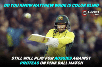 DO YOU KNOW MATTHEW WADE IS COLOR BLIND  S Cricket  Shots  STILL WILL AUSSIES  AGAINST  PROTEAS  PINK BALL MATCH That's what we call a selfless cricketer !