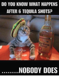 Tequila: DO YOU KNOW WHAT HAPPENS  AFTER 6 TEQUILA SHOTS  NOBODY DOES