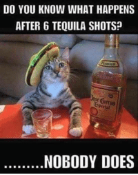 shots: DO YOU KNOW WHAT HAPPENS  AFTER 6 TEQUILA SHOTSP  Pecial  NOBODY DOES