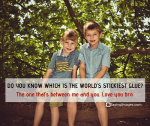 Love, Happy, and Quotes: DO YOU KNOW WHICH IS THE WORLD'S STICKIEST GLUE?  The one that's between me and you. Love you bro.  SayingImages.com 20 Fun and Loving Happy Brother's Day Quotes and Messages #sayingimages #happybrothersday #brothersdayquotes #happybrothersdayquotes #happybrothersdaywishes #happybrothersdaygreetings