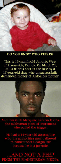 https://t.co/UhQadM2SDB: DO YOU KNOW WHO THIS IS?  This is 13-month-old Antonio West  of Brunswick, Florida. On March 21,  2013 he was shot in the face by a  17-year-old thug who unsuccessfully  demanded money of Antonio's mother.  And this is De Marquise Kareem Elkins,  the subhuman piece of excrement  who pulled the trigger.  He had a 14-year-old accomplice  who the authorities aren't allowed  to name under Georgia law  because he is a juvenile.  AND NOT A PEEP  FROM THE MAINSTREAM MEDIA. https://t.co/UhQadM2SDB