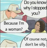 Memes, 🤖, and Why: Do you know  why I stopped  you?  Because im  a woman  Of course noti  don't be silly. 😎👌^