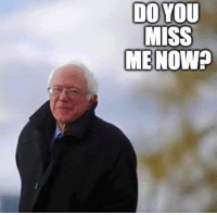We allowed the DNC to screw Bernie. We enabled the DNC to screw the US.: DO YOU  MISS  ME NOW? We allowed the DNC to screw Bernie. We enabled the DNC to screw the US.