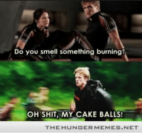 "Memes, Shit, and Smell: Do you smell something burning?  OH SHIT, MY CAKE BALLS!  THE HUNGER MEMES.NET <p>Peeta Even Bakes During The Time He Could Get Murdered! <a href=""http://ift.tt/1cd4qXK"">http://ift.tt/1cd4qXK</a></p>"