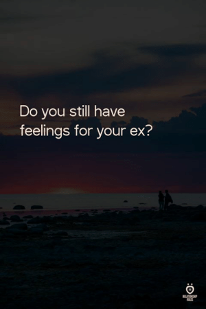 You, Still, and For: Do you still have  feelings for your ex?  uLis